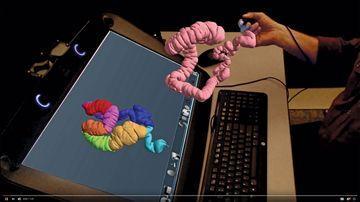 3D Organs